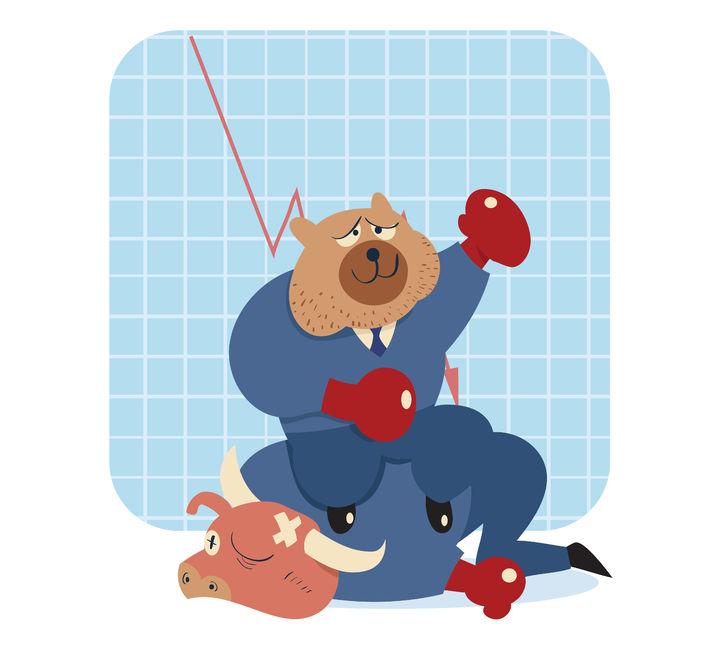 bear n bull